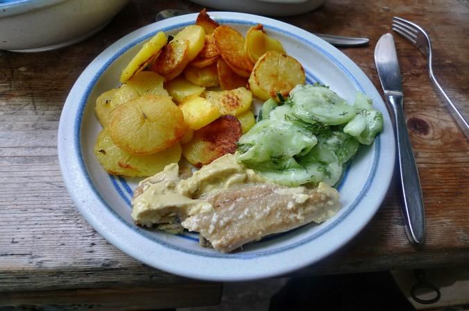 Bratkartoffel-Dosenfisch-28.7.14   (1)