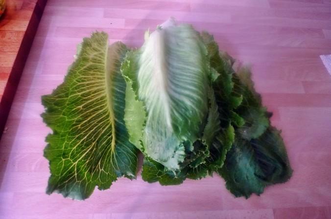 Lachs-Gemüse-Kartoffel-31.7.14   (4)