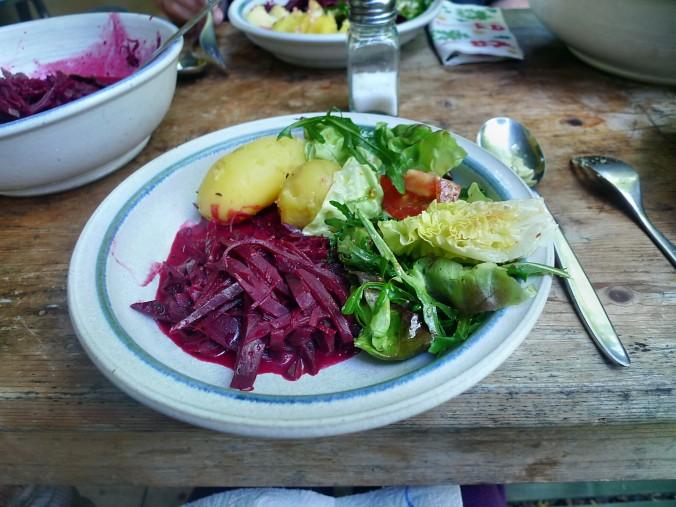 Rote Beetegemüse Kartoffel-19.7.14   (25)