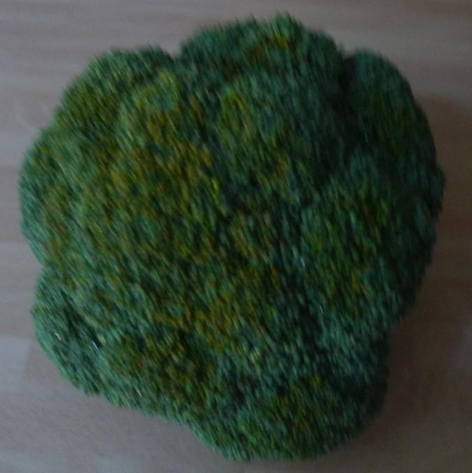 Brokkoli-Schwarze Nudeln- 29.9.14  (1)