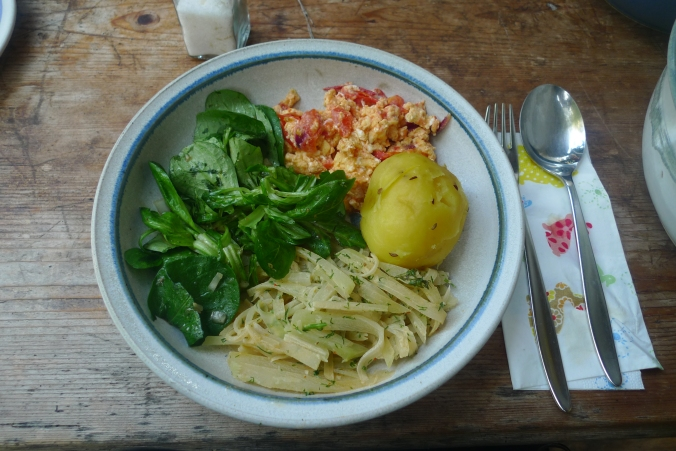 Kohlrabigemüse-Rührei-Salat-Kartoffeln-30.9.14   (17)
