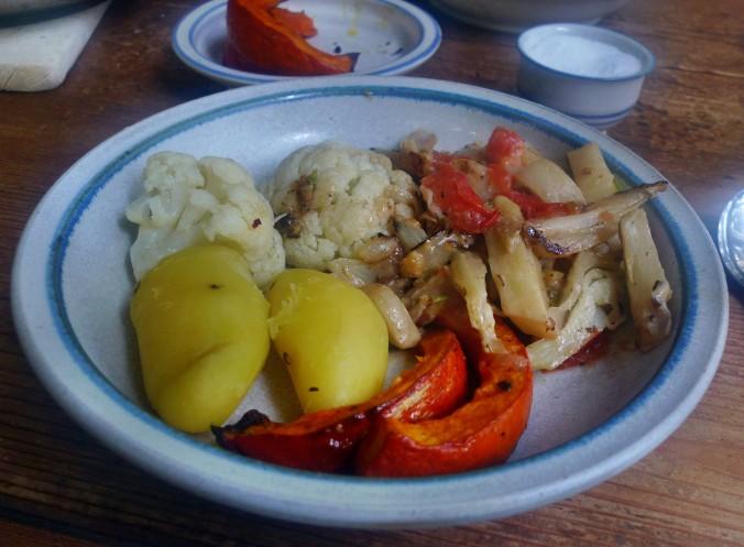 Fenchelgemüse-Hokkaido-Blumenkohlsalat-Kartoffeln- 22.10.14   (22)