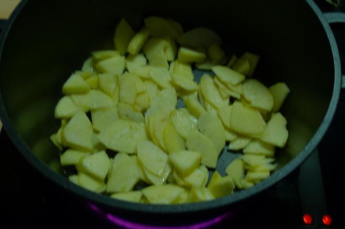 Lachs-Apfelgericht - 31.12.14   (4)