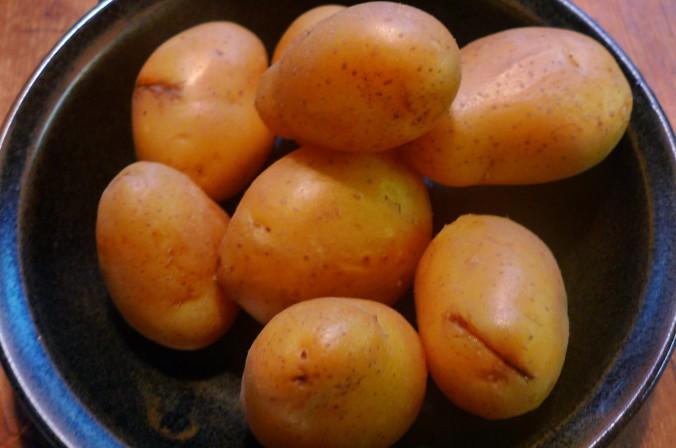 Schollenfilet,Salate,Kartoffeln-16.12.14   (5)