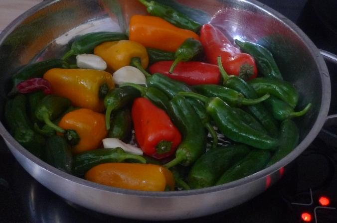 Pimientos(Bratpaprika)Tomaten,Linguini -7.1.15  (5)