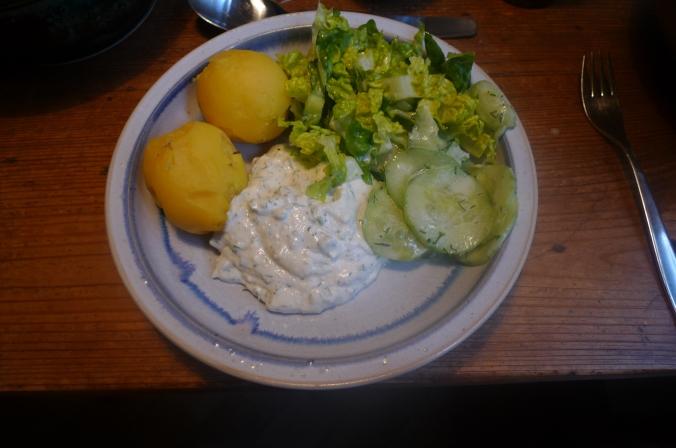 Quark,Kartoffeln,Salat,Dessert  -  22.2.15   (6)