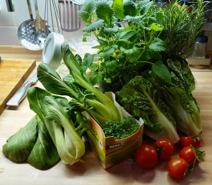 Nudeln mit Gorgonzola,Pak Choy,Salat, - 1.3.2015   (2)