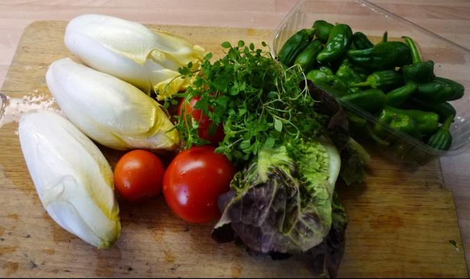 Chicoree,Salat mit Vorelmiere,Kartoffelgratin -9.4.15   (2)