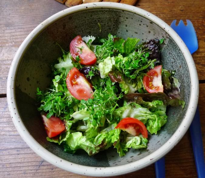 Chicoree,Salat mit Vorelmiere,Kartoffelgratin -9.4.15   (8)