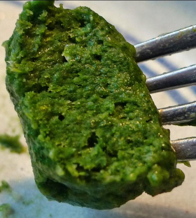Spinat,Ricotta,Gnocchis,überbacken - 1.4.15   (22)