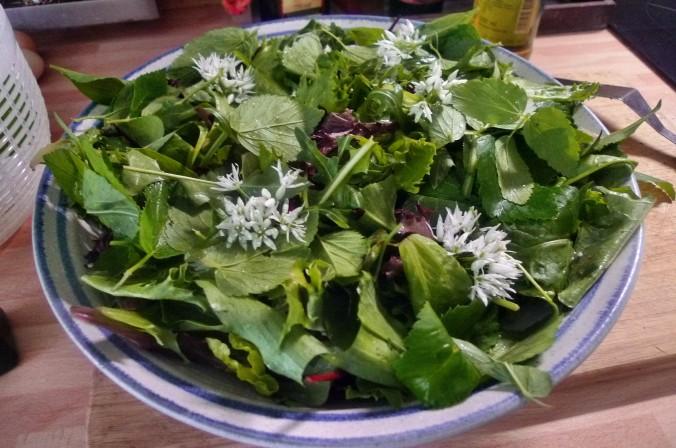 Bratkartoffel,Salat,Spiegelei,Dip,Zucchini - 13.5.15   (8)