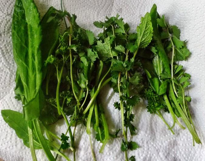 Kalte Kräutersuppe,gebratener Fenchel,Tomatensalat - 4.5.15   (1)