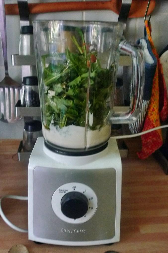Lachs,Spargel,Dip,Salat,Kartoffel -10.5.15   (4)