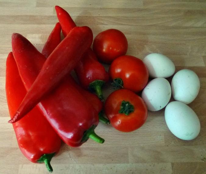 Paprika,Tomaten,Ei -20.5.15   (1)