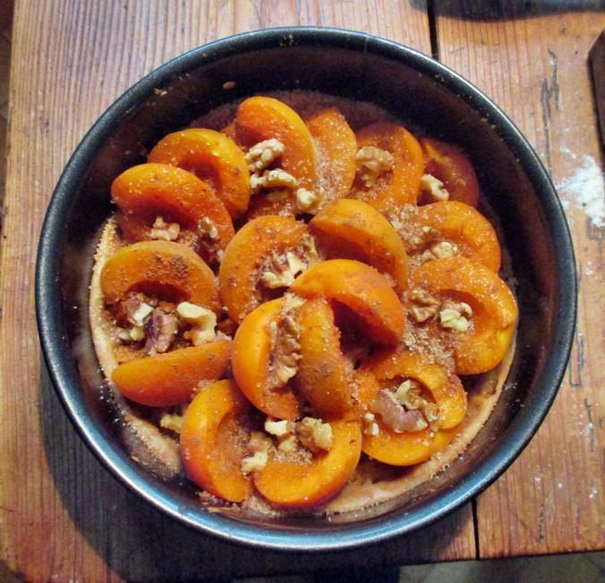 Aprikosenkuchen-21.6.15   (3)