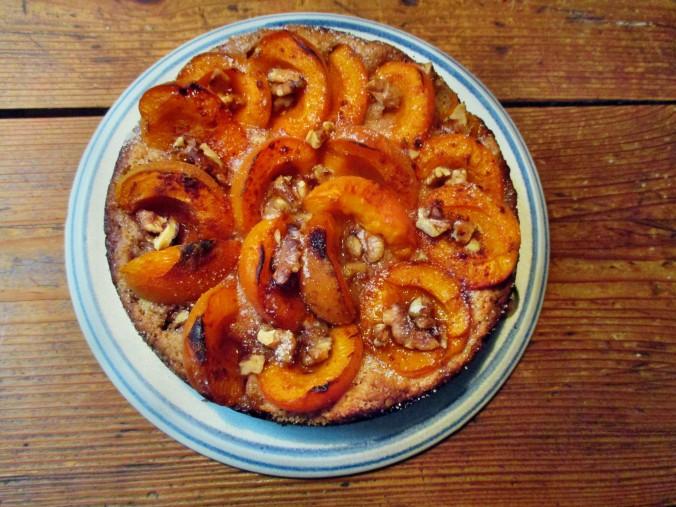 Aprikosenkuchen-21.6.15   (5)
