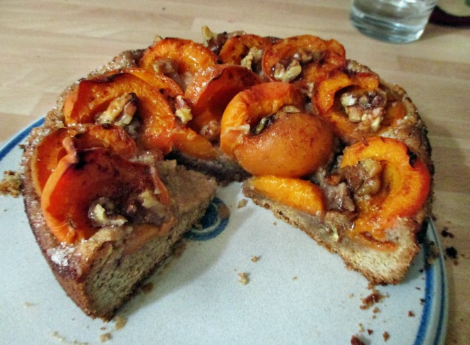 Aprikosenkuchen-21.6.15   (7)