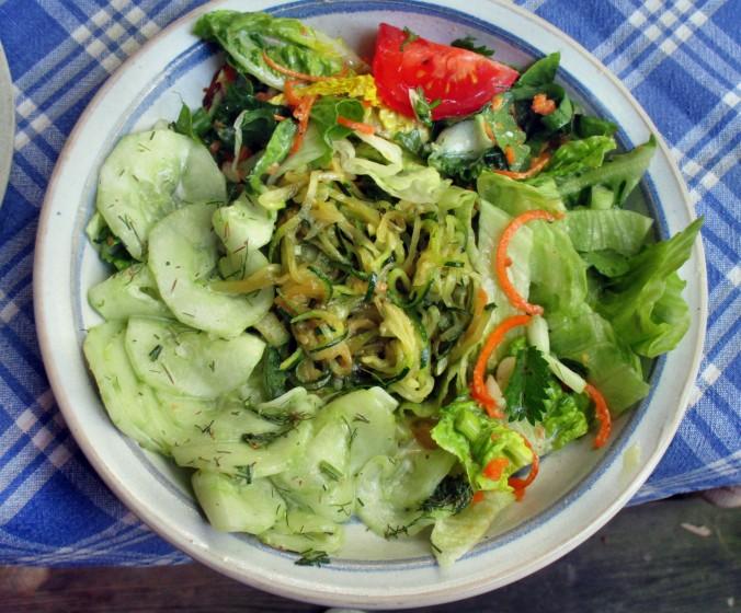 Zucchinispagetthi,Salate-30.6.15   (14)