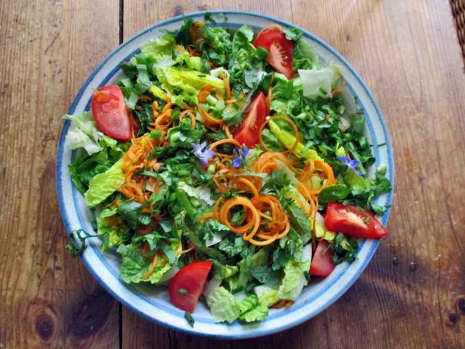 Zucchinispagetthi,Salate-30.6.15   (3)