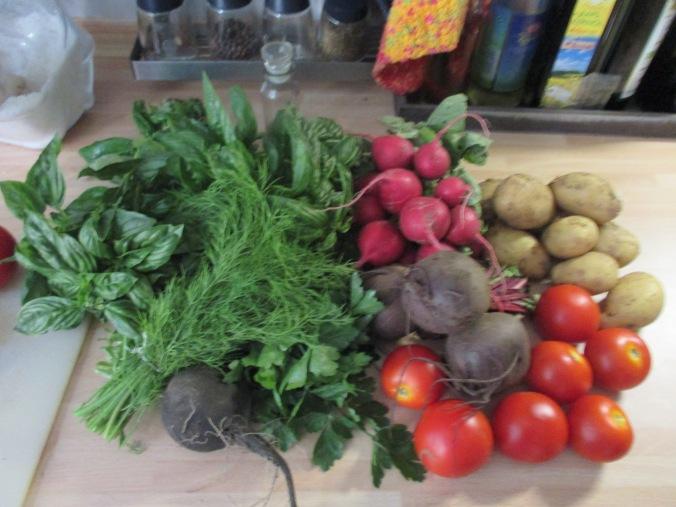 Frikadellen,Kartoffeln,Tomatensalat - 24.7.15   (3)