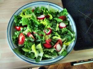 Gemischter Salat-Mais-Forelle -6.7.15   (1)