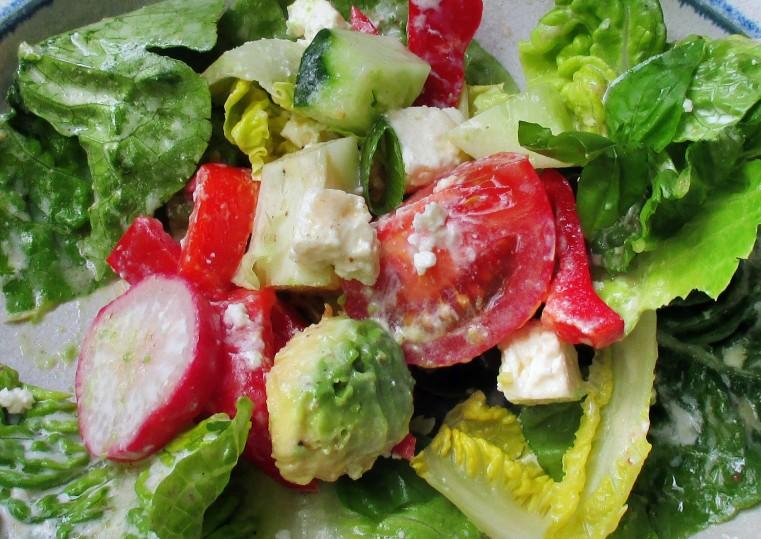 Gemischter Salat-Mais-Forelle -6.7.15   (12)