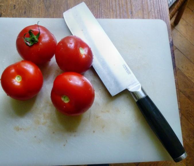 Tintenfisch Tuben,Reis,Tomatensalat,Melone -18.7.15   (6b)