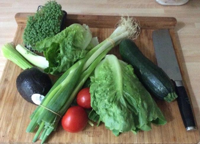 Forelle,Salat,Zucchini -25.8.15   (2)