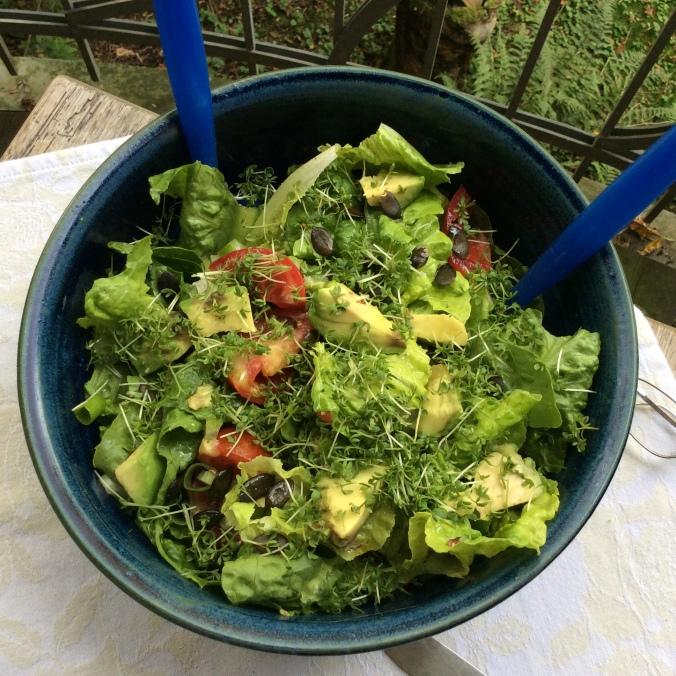 Forelle,Salat,Zucchini -25.8.15   (3)