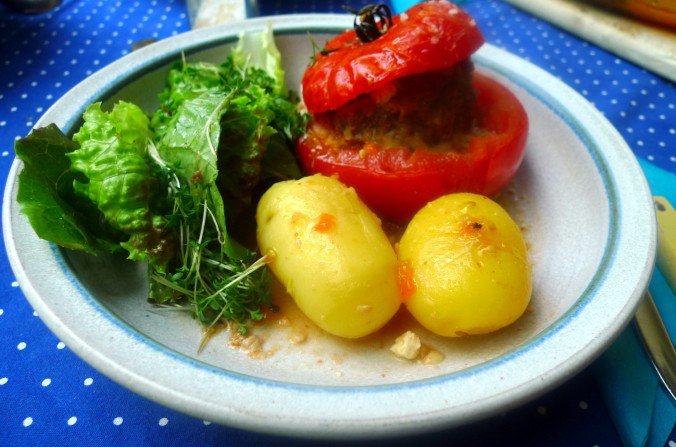 Gefüllte Tomaten - 12.8.15   (11)