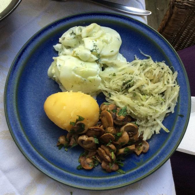 Pilze,Salate - 23.8.15 -  (11)