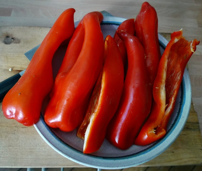 Spitzpaprika-Ravioli -6.8.15   (3)