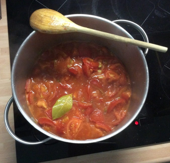 Tomatensuppe-22.8.15   (5)