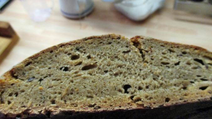 Brotan-angeschnitten - 14.9.15   (2)