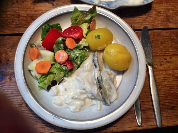 Marinierter Hering,gemischter Salat,Kartoffeln - 7.10.15   (1)