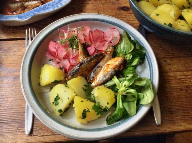 Sardinen,Salate,Kartoffeln,26.10.15   (1)