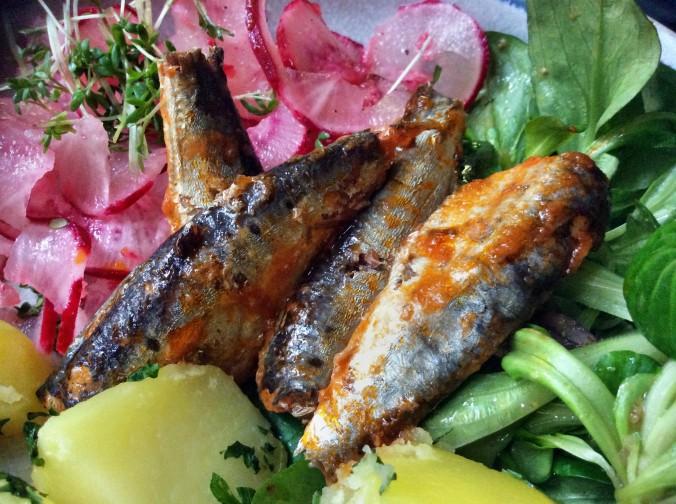 Sardinen,Salate,Kartoffeln,26.10.15   (10)