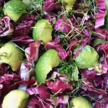 Selbstgemachte Nudeln,Costa Prawns,Salat, - 27.10.15 (1aa) (9)