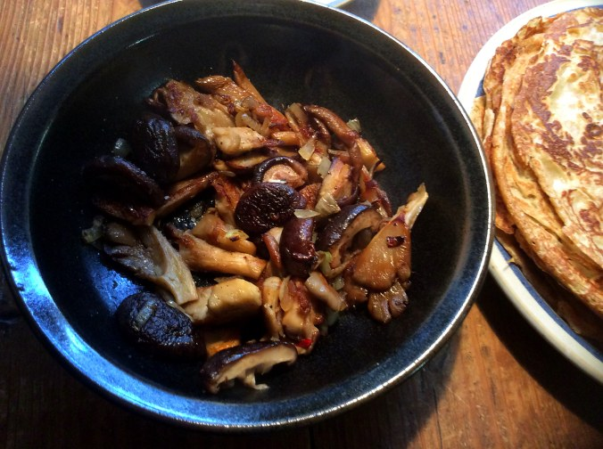 Pfannkuchen ,Pilze,Salat,Obstsalat -21.11.15   (10)