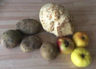 Sellerieschnitzel,Kartoffelstampf -13.11.15 (3)