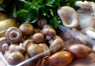 30.1.16 - Pilze,Kartoffelstampf,Salat,vegetarisch (2b)