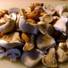 30.1.16 - Pilze,Kartoffelstampf,Salat,vegetarisch (2e)