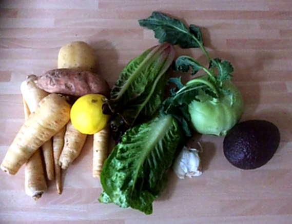 25.2.16 - Wurzelstamp,Salate,Guacamole,vegetarisch (2)
