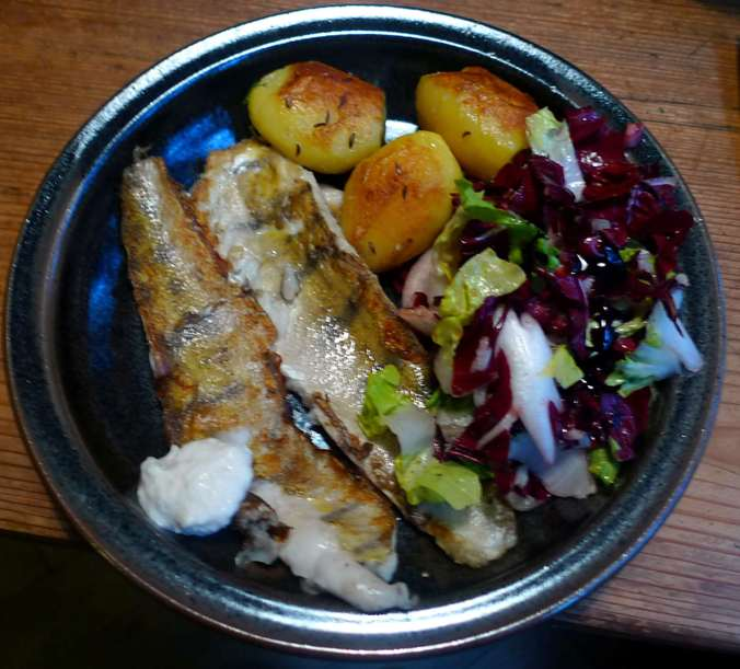 9.2.16 - Zander,Salat,Kartoffel,pescetarisch (1c) (1)