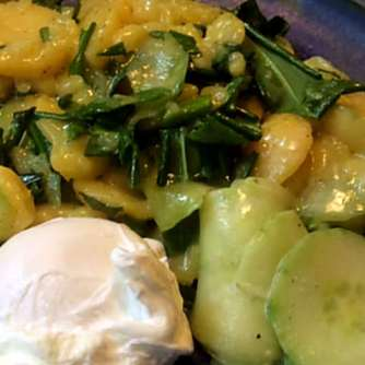 20.3.16 - Kartoffelsalat,pchiertes Ei,Quitten Dessert,vegetarisch (15)