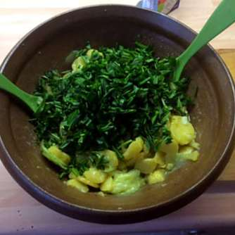 20.3.16 - Kartoffelsalat,pchiertes Ei,Quitten Dessert,vegetarisch (7)