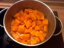 25.3.16 - Rotbarsch,Süßkartoffelpürree,Salat,Petersiliensoße (7)
