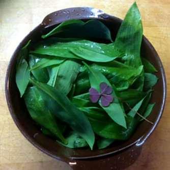 30.3.16 - Ofengemüse,Quinoa (9)