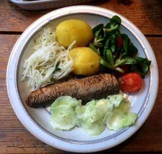 11.4.16 - Brathering,Salate,Kartoffeln,pescetarisch (10)