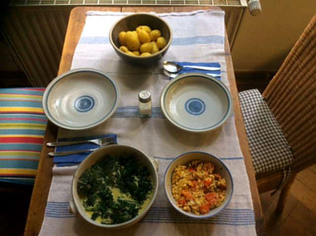26.4.16 - Spinat,Rührei,Kartoffeln,vegetarisch (3)